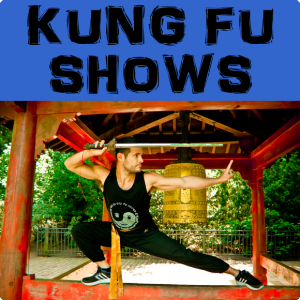 buttonkungfushows1